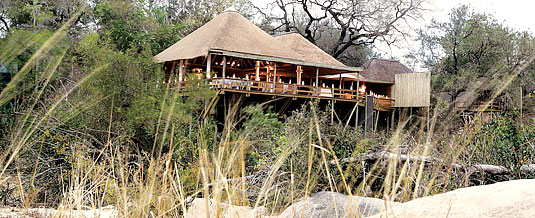 Safari Lodge Booking Founder's Camp Londolozi Game Reserve Sabi Sand Private Game Reserve