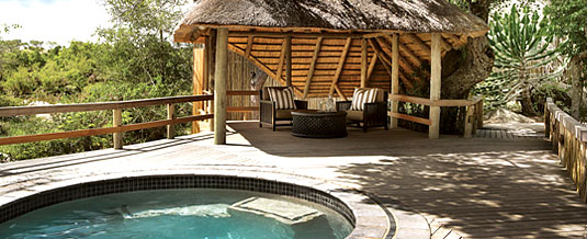 Swimming Pool Founders Camp Londolozi Private Game Reserve Sabi Sand Private Game Reserve Accommodation Booking
