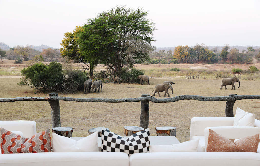 Elephants sighting from deck Mala Mala Sable Camp Mala Mala Private Game Reserve Sabi Sand Accommodation Booking