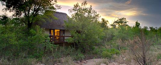 Luxury Suite Sabi Sabi Little Bush Camp Luxury Accommodation Sabi Sabi Private Game Reserve Sabi Sands Reserve Accommodation bookings