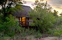 Little Bush Camp Sabi Sabi Private Game Reserve Sabi Sands Reserve Luxury