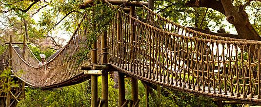 Swing Bridge to Tree House Safari Lodge at Ulusaba Private Game Reserve - Sabi Sand Private Game Reserve