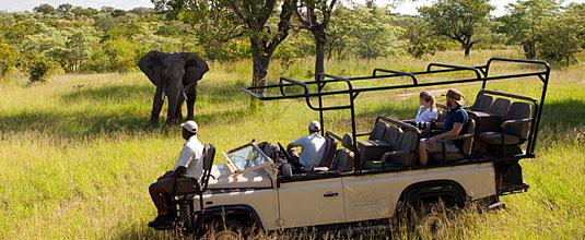 Ulusaba Game Drives Elephant Sighting Ulusaba Private Game Reserve Sabi Sand Private Game Reserve