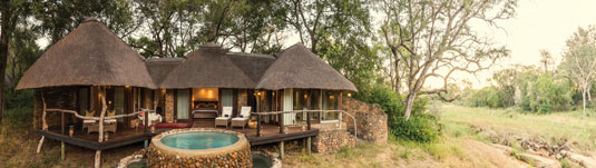 South African Luxury Safari Lodge Bookings Dulini Safari Lodge Sabi Sand Game Reserve