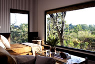 Londolozi Private Game Reserve - Pioneer Camp