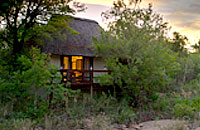 Little Bush Camp Sabi Sabi Private Game Reserve Sabi Sands Reserve Luxury